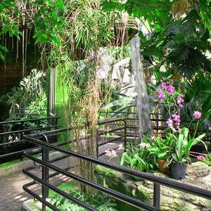 Botanical Garden 571 D30150D1 5056 A348 3A5420A4C335F8B2