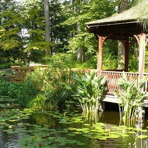 Krs Botanicalgardens